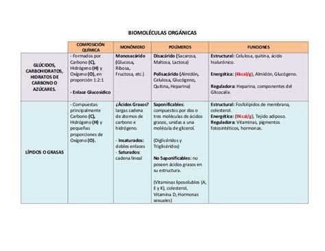 1º Medio 2011 - Cuadro Biomoléculas Orgánicas