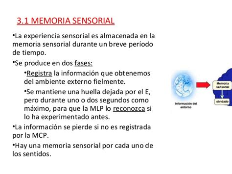 1. Tipos de memoria