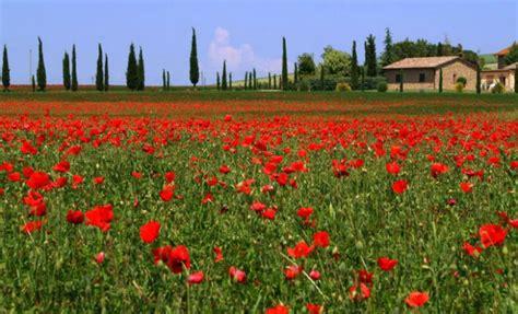 10 increíbles paisajes de primavera | De10