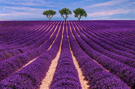 10 lugares increíbles que ver en Francia - Viajeros Callejeros