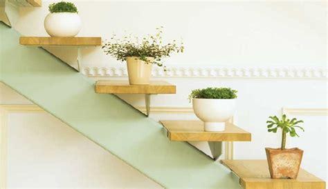 10 Motivos por los que tener plantas en casa - Viveros Don ...