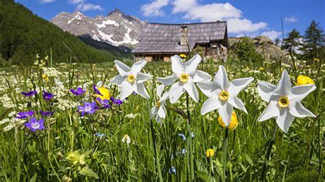 10 preciosos paisajes primaverales de todo el mundo