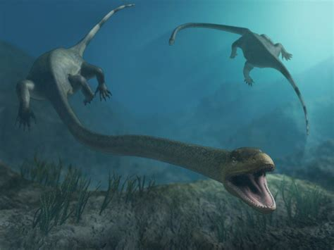 10 Terrifying Prehistoric Sea Monsters   Listverse