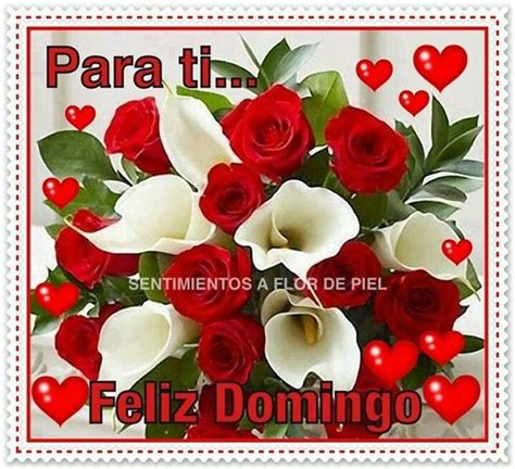 100 best FELIZ DOMINGO images by Blanca Avina on Pinterest ...
