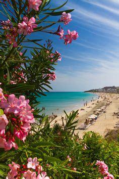 1000+ images about Cerrajeros Fuerteventura 603 909 909 on ...