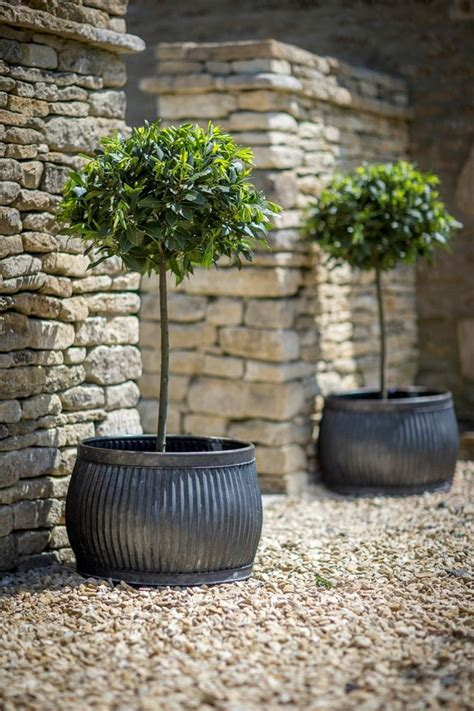 1001 + Ideas de decoración de jardín con maceteros grandes