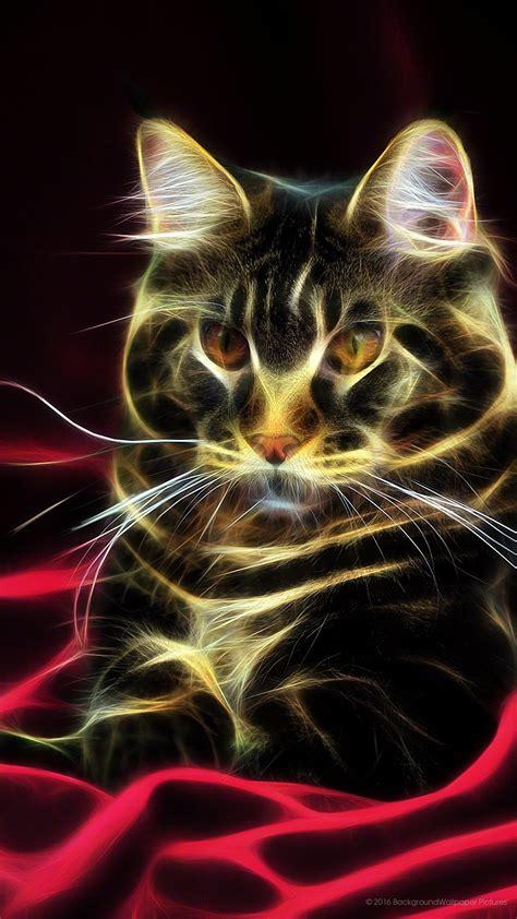 1080x1920 wallpaper cat. Full HD 1080p   cute phone ...