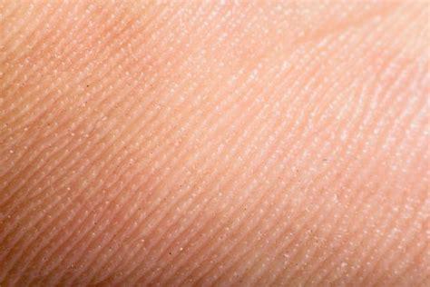 11 impactantes datos sobre la piel humana   Batanga
