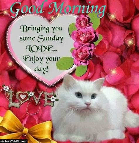 12 best images about Sunday greetings on Pinterest ...