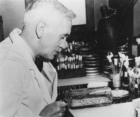 12 best penicilina images on Pinterest | Alexander fleming ...