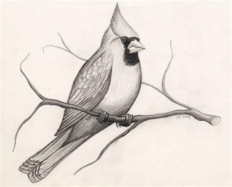 15+ Bird Drawings - JPG Download