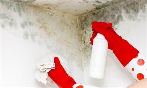 15 tips para quitar manchas de humedad en paredes