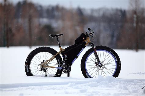 16 best Fat Bike Fanatic images on Pinterest | Bicycles ...
