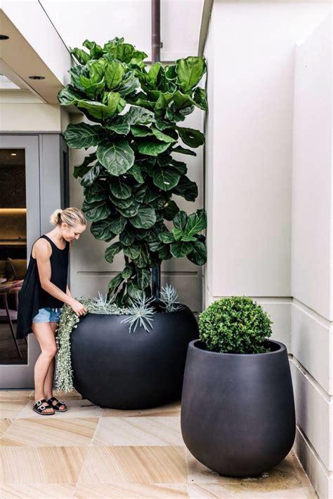 17 Best ideas about Large Flower Pots on Pinterest ...