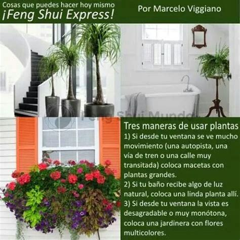 17 Best images about casa feng shui on Pinterest | Feng ...