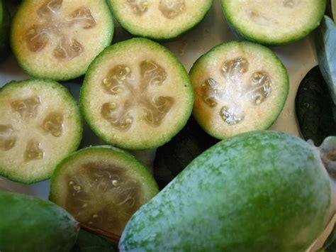 17 Best images about Las frutas más exoticas y raras on ...
