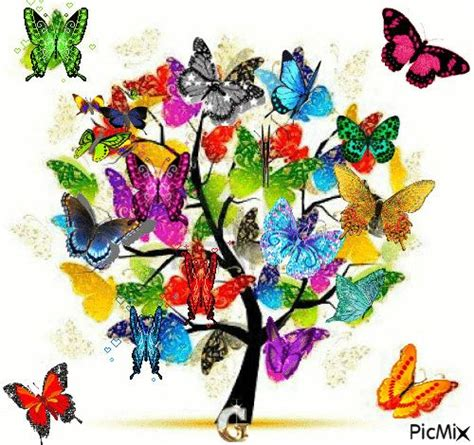 172 best images about GIF's (BUTTERFLY) on Pinterest ...