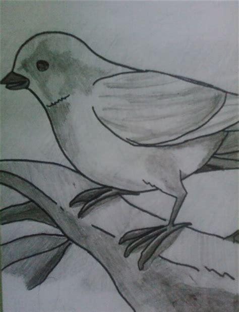 2 dibujo a lapiz pajaro « MAESTROAJEDREZ
