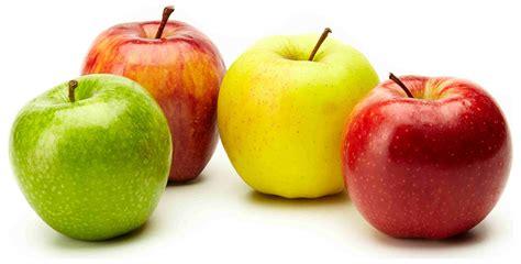 20 Alimentos para perder peso y estar saludables