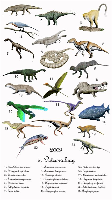 2009 in paleontology - Wikipedia