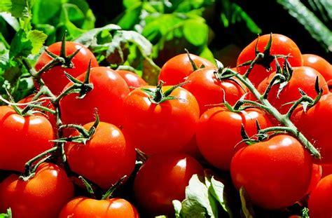 21 Alimentos con Biotina