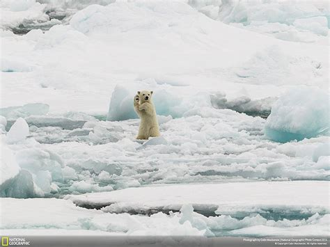 21 Of The Best Nature Photo Entries To The 2014 National ...