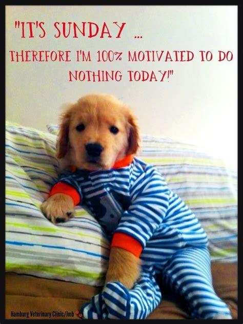 25+ best Happy sunday quotes on Pinterest | Happy monday ...