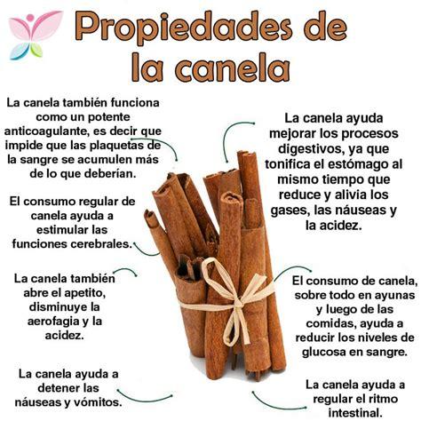 25+ Best Ideas about Canela Beneficios on Pinterest ...