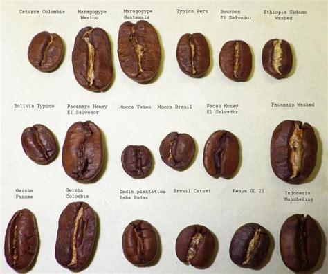 25+ best ideas about Coffee Varieties on Pinterest ...
