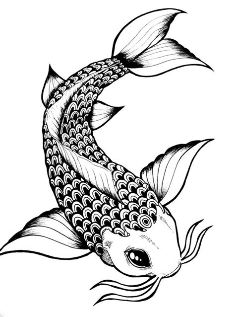25+ Best Ideas about Fish Drawings on Pinterest | Fish ...