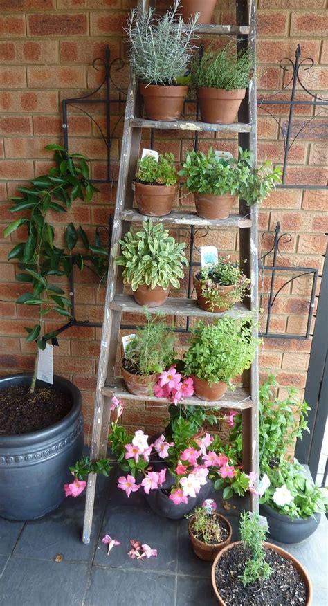 25+ Best Ideas about Garden Ladder on Pinterest | Vertical ...