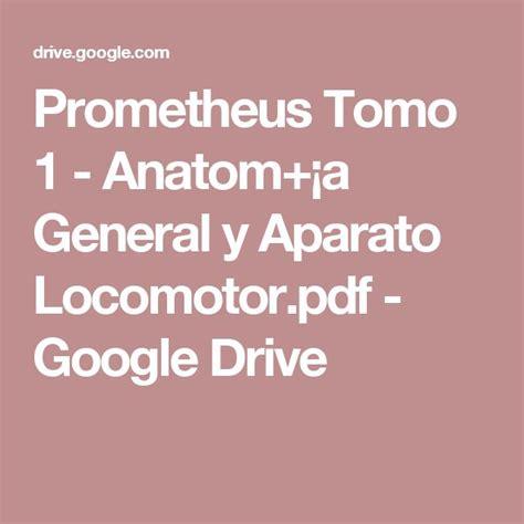 25+ beste ideeën over Aparato locomotor op Pinterest - El ...