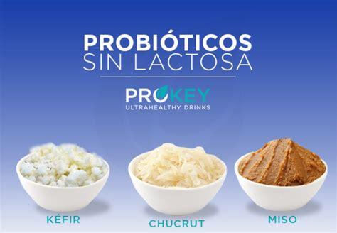 3 Alimentos Probióticos SIN Lactosa que te Gustarán ...