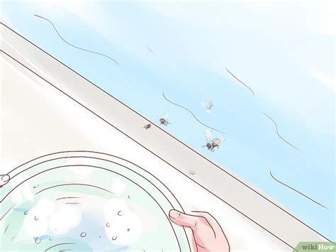3 formas de ahuyentar a las abejas - wikiHow