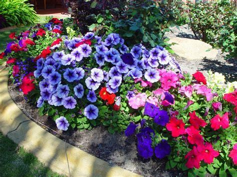 #3 Nice Flowers Garden Wallpapers | cokolwiekap