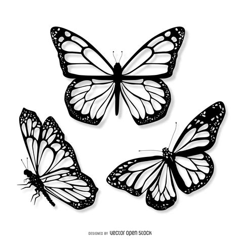 3 realistic butterfly illustration set - Vector download