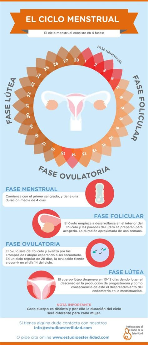 31 best Salud Sexual y Reproductiva images on Pinterest ...