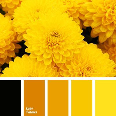 33 best Bright yellow images on Pinterest | Yellow color ...