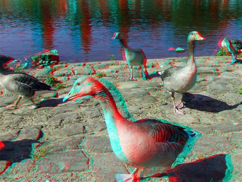 3D   red/cyan s most interesting Flickr photos | Picssr
