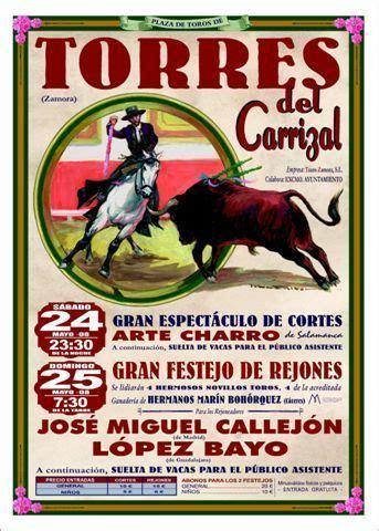 49122 código postal de Torres del Carrizal