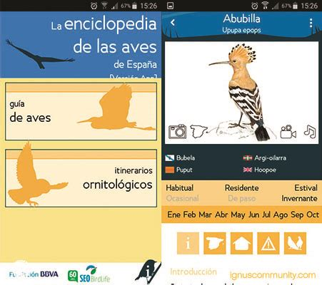 5 aplicaciones móviles esenciales para naturalistas - IGNUS
