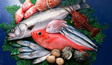 5 especies de pescado que contienen omega 3. - Laboratorio ...