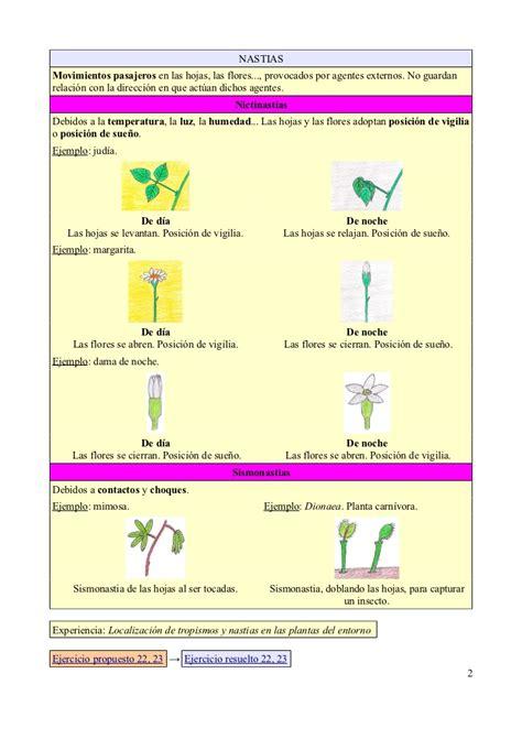 5.  Función de relación en las plantas