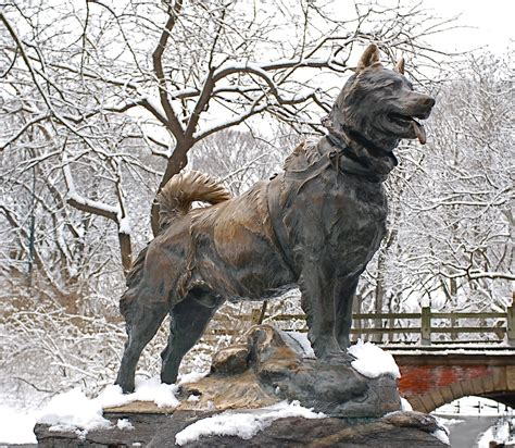 5 Most Famous Dogs in History, Peoria, AZ - Arrowhead ...