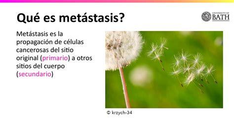 6.14   Metástasis | Nutrición y estilo de vida saludable ...