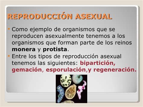 6. tipos de reproducción 1