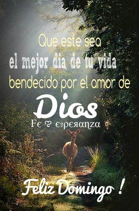 66 best Feliz Domingo images on Pinterest | Happy sunday ...