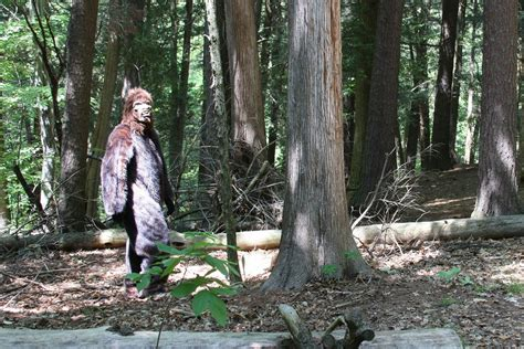 67/365 - Bigfoot Sighting | hehe, fun making a video for ...