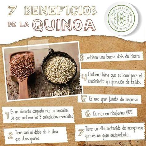 7 Beneficios de la QUINOA | Salud/Nutrición | Pinterest ...