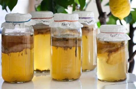 7 beneficios del té kombucha basados en estudios científicos